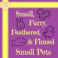 smallpets